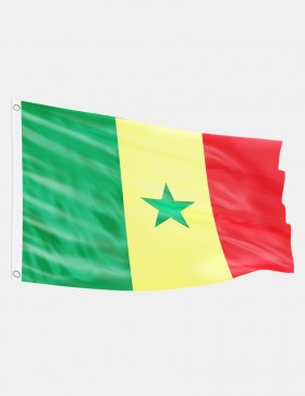 Fahne Senegal 90 x 150 cm